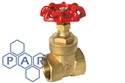 "½"" bspt female brass gate valve"